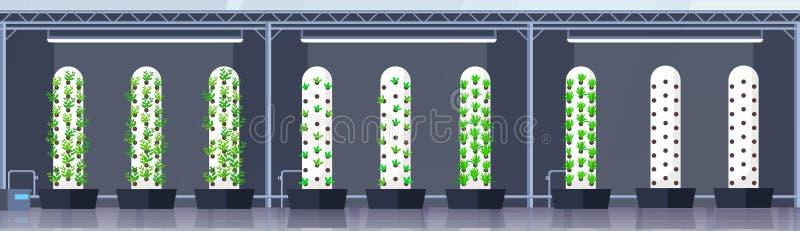 Σύγχρονες οργανικές υδροπονικές κάθετες πράσινες εγκαταστάσεις έννοιας συστημάτων καλλιέργειας αγροτικής εσωτερικές γεωργίας έξυπ διανυσματική απεικόνιση