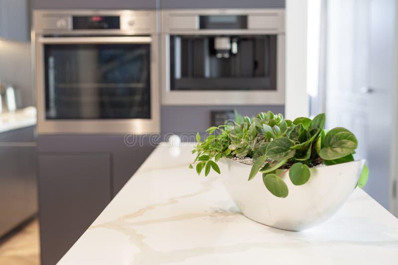 Σύγχρονος, φωτεινός, καθαρός, εσωτερικό κουζινών με τις συσκευές ανοξείδωτου σε ένα σπίτι πολυτέλειας στοκ εικόνα