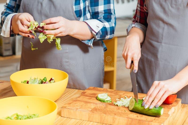 Σύγχρονος χορτοφάγος ελεύθερος χρόνος οικογενειακού μαγειρέματος τρόπου ζωής στοκ φωτογραφία