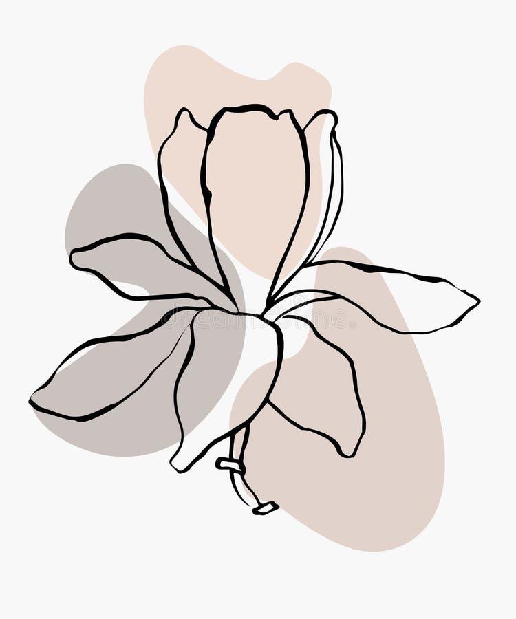 Σύγχρονο αφηρημένο διανυσματικό υπόβαθρο ή σχεδιάγραμμα μορφών Λουλούδι σχεδίων γραμμών περιγράμματος του magnolia Μοντέρνα τέχνη ελεύθερη απεικόνιση δικαιώματος