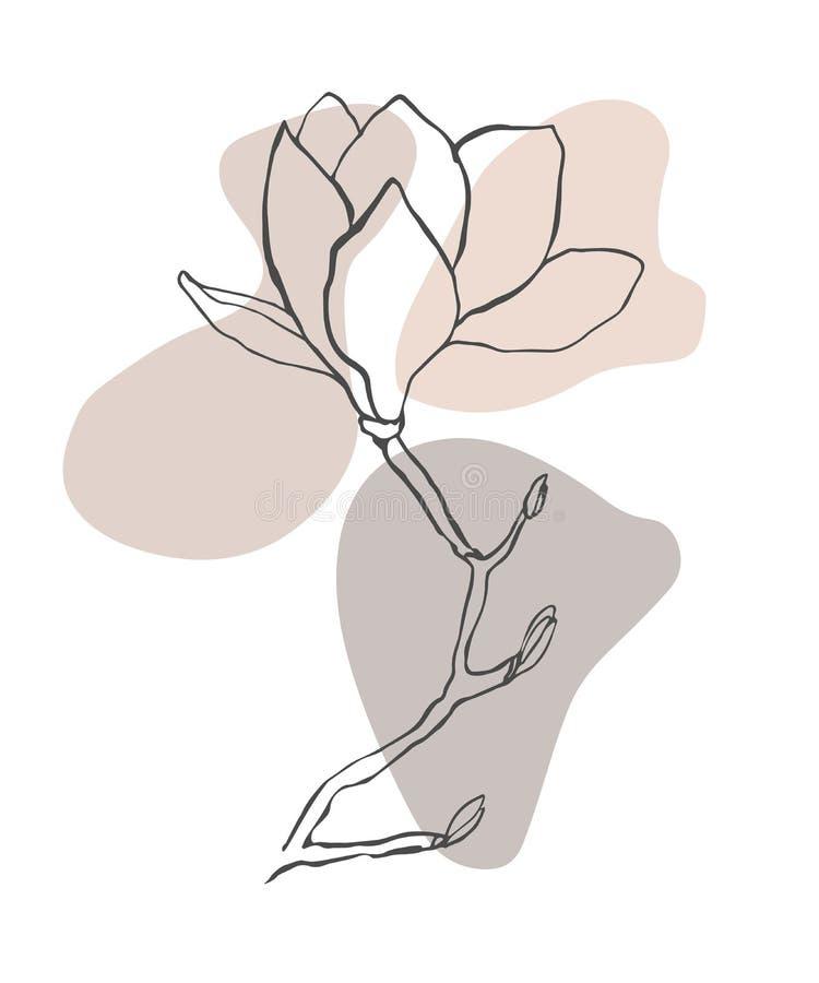 Σύγχρονο αφηρημένο διανυσματικό υπόβαθρο ή σχεδιάγραμμα μορφών Λουλούδι σχεδίων γραμμών περιγράμματος του magnolia Μοντέρνα τέχνη διανυσματική απεικόνιση