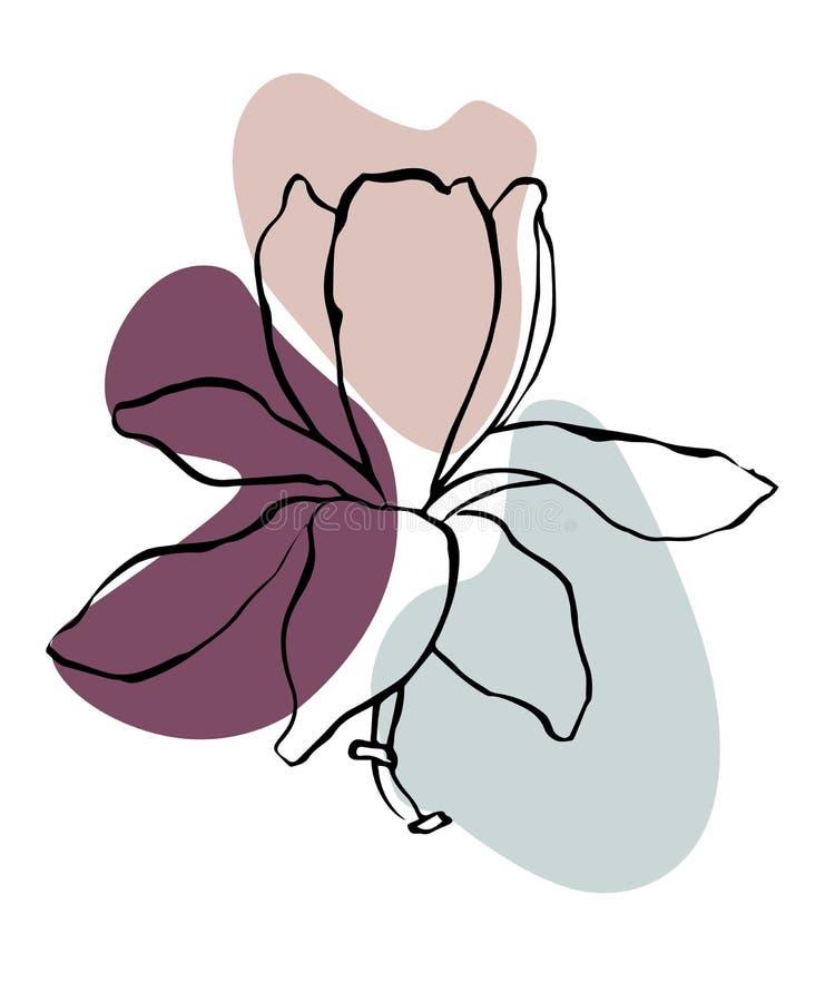 Σύγχρονο αφηρημένο διανυσματικό υπόβαθρο ή σχεδιάγραμμα μορφών Λουλούδι σχεδίων γραμμών περιγράμματος του magnolia Μοντέρνα τέχνη απεικόνιση αποθεμάτων