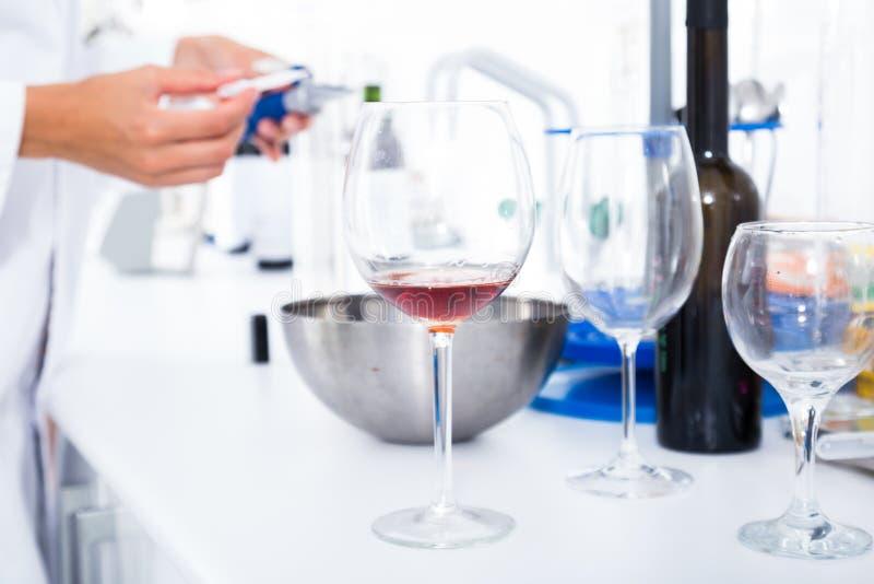 Σύγχρονο εργαστήριο της οινοποιίας Έλεγχος της οξύτητας του κρασιού και των οργανοληπτικών χαρακτηριστικών στοκ εικόνες