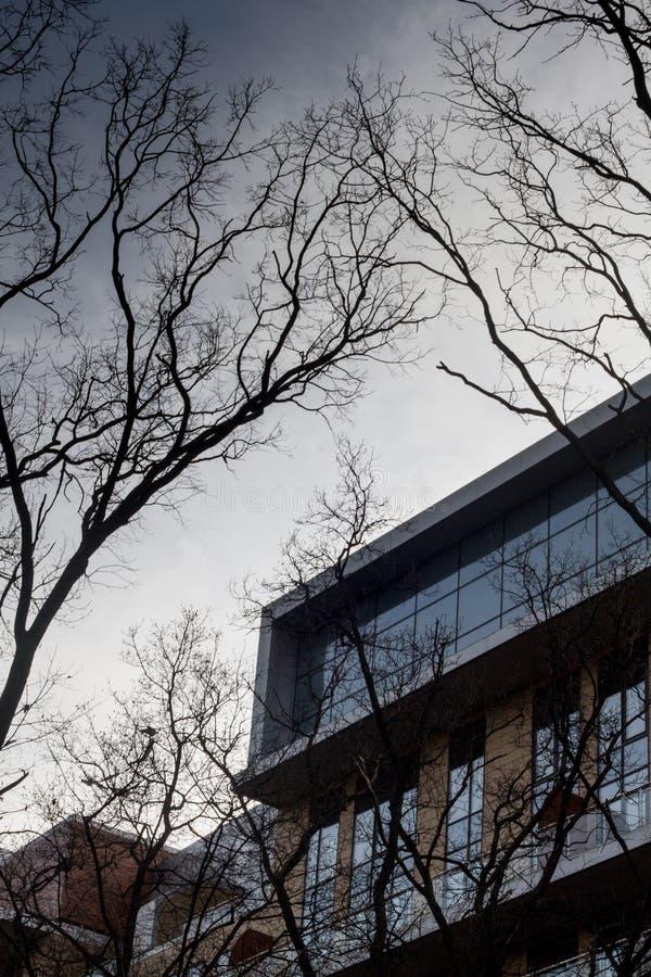 Σύγχρονο κατοικημένο κτήριο στοκ εικόνα με δικαίωμα ελεύθερης χρήσης