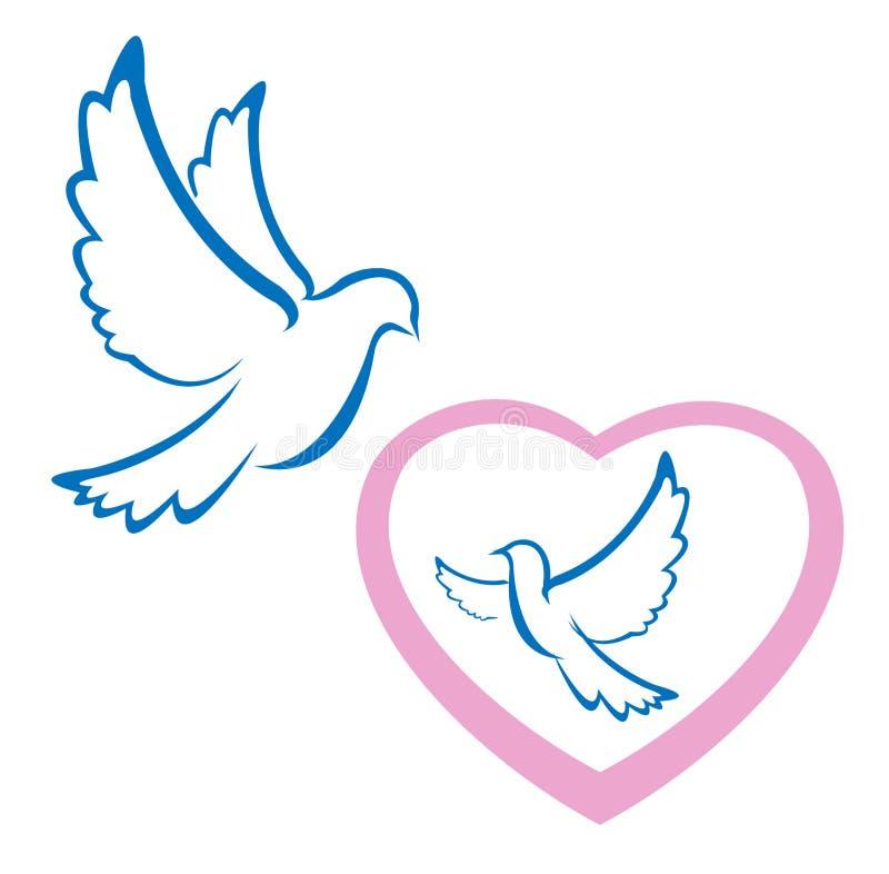 σύμβολο αγάπης περιστεριών στοκ φωτογραφία