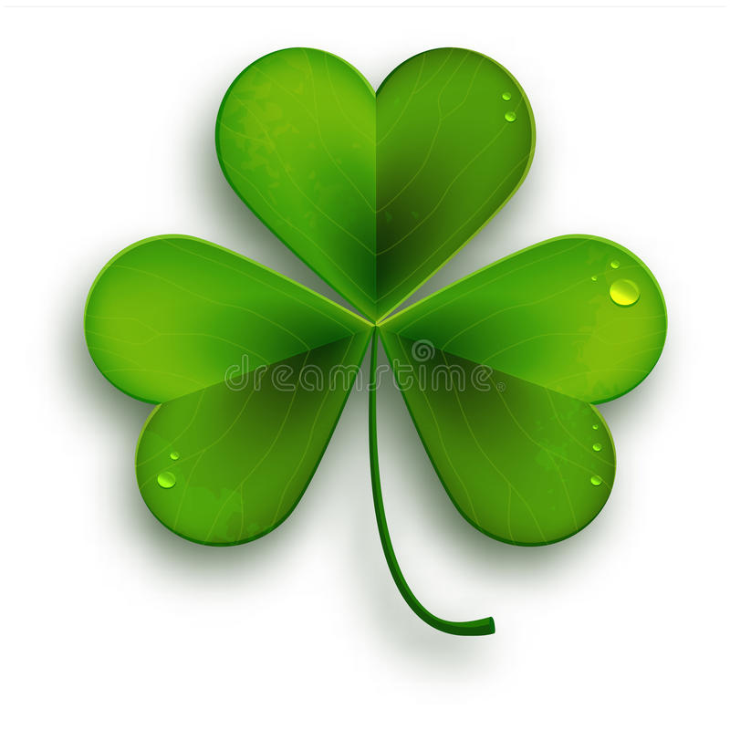 Σύμβολο ημέρας Αγίου Patricks, διανυσματικό ρεαλιστικό φύλλο τριφυλλιών απεικόνιση αποθεμάτων
