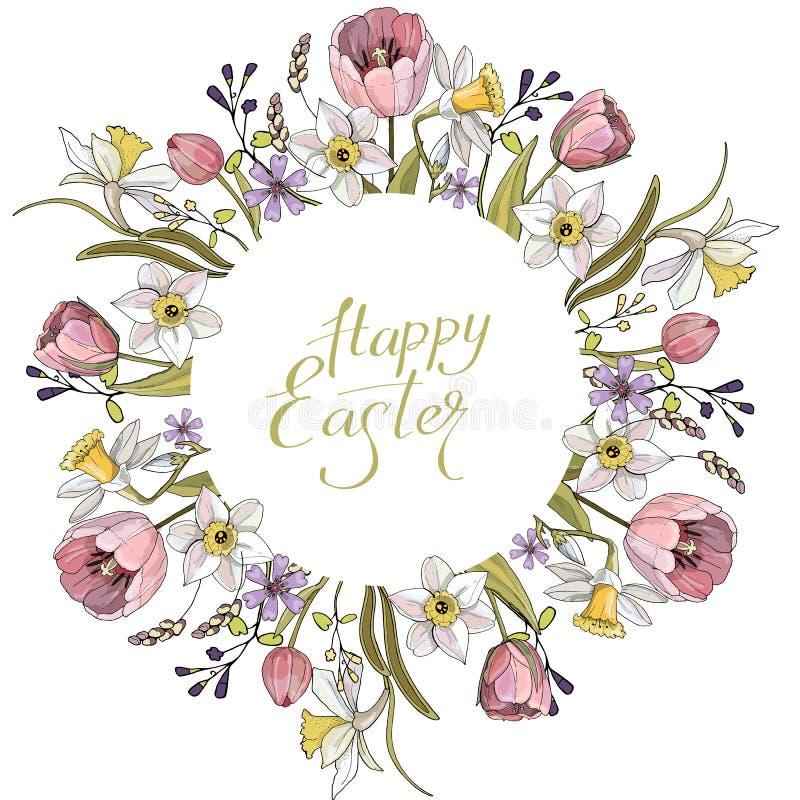 Σύνθεση άνοιξη με τον κύκλο και τα floral ρομαντικά στοιχεία Τουλίπες και daffodils στο άσπρο υπόβαθρο διανυσματική απεικόνιση