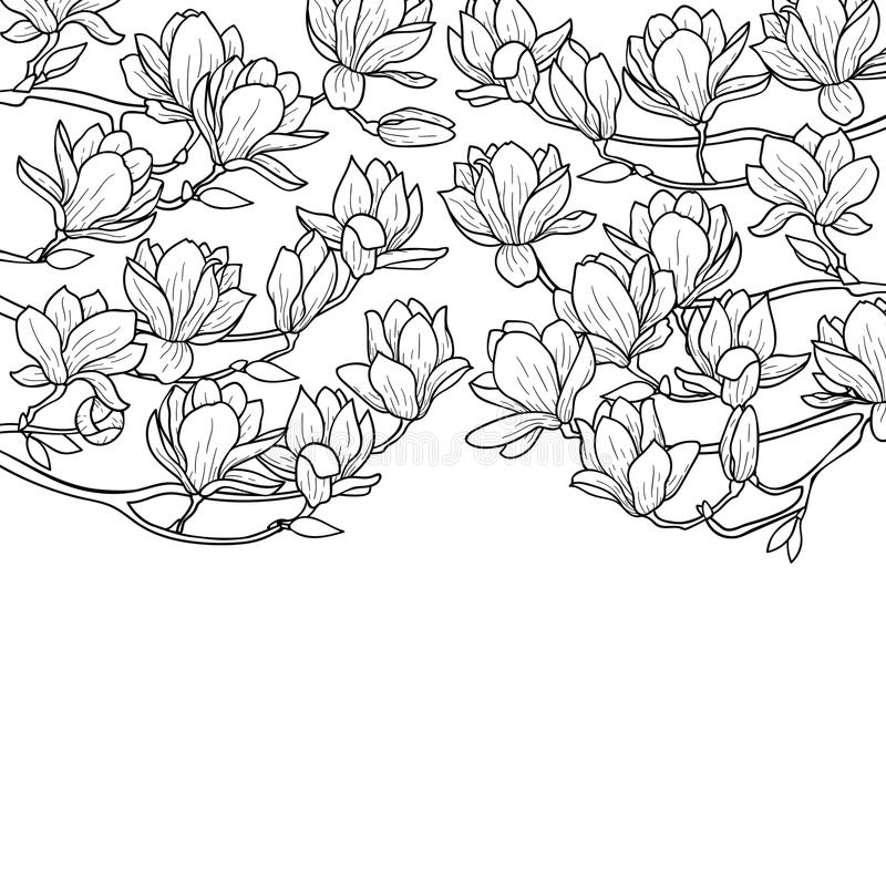 Σύνθεση ανοίξεων Magnolia απεικόνιση αποθεμάτων