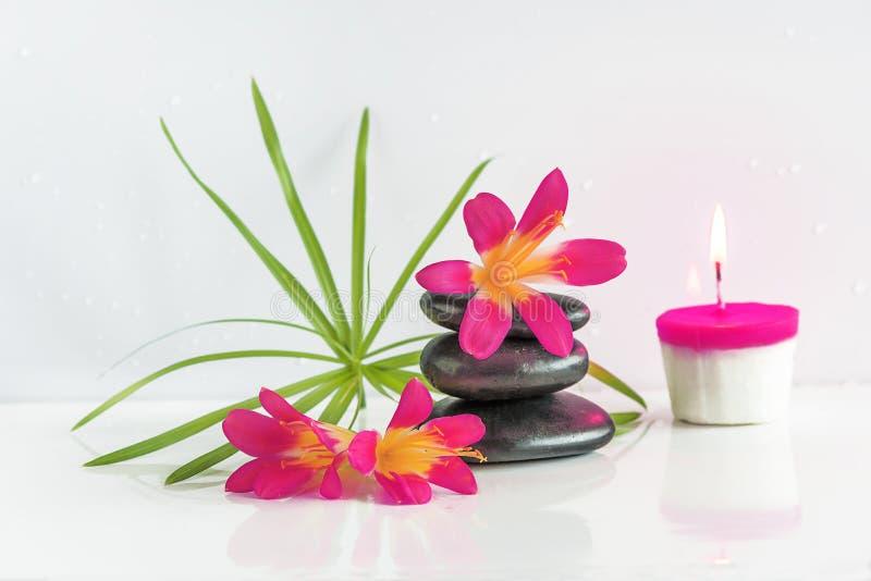 σύνθεση κύπελλων που επιπλέει gerber spa τις πετσέτες πετρών Πυραμίδα των μαύρων πετρών μασάζ, των πορτοκαλιών λουλουδιών και του στοκ φωτογραφία με δικαίωμα ελεύθερης χρήσης