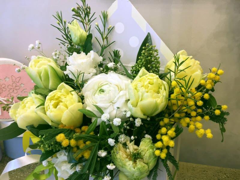 Σύνθεση με τα ζωηρόχρωμα λουλούδια Ανθίζει yelloe την τουλίπα, άσπρο βατράχιο, κίτρινο mimosa Τα λουλούδια κλείνουν επάνω απομονω στοκ εικόνα