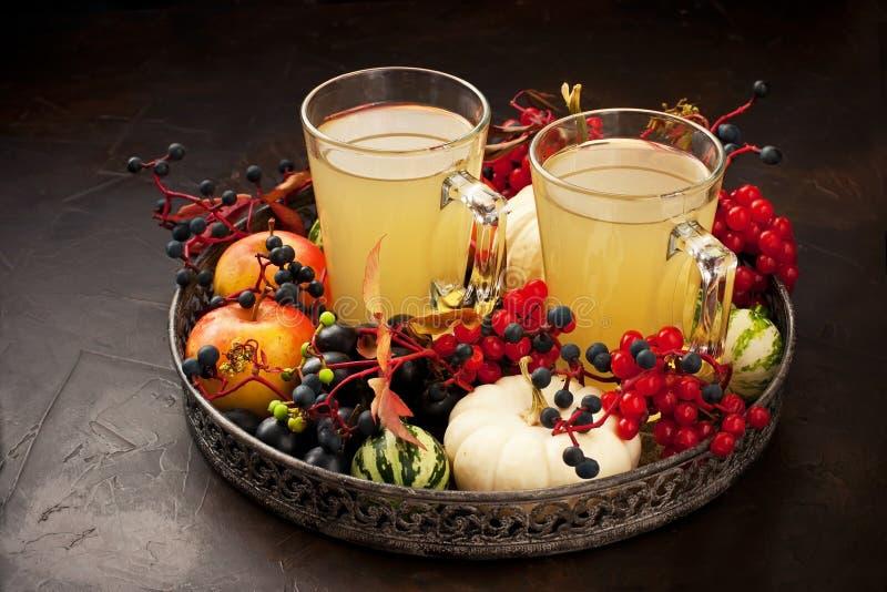 Σύνθεση με το ποτό μήλων στο σκοτεινό υπόβαθρο στοκ φωτογραφία με δικαίωμα ελεύθερης χρήσης