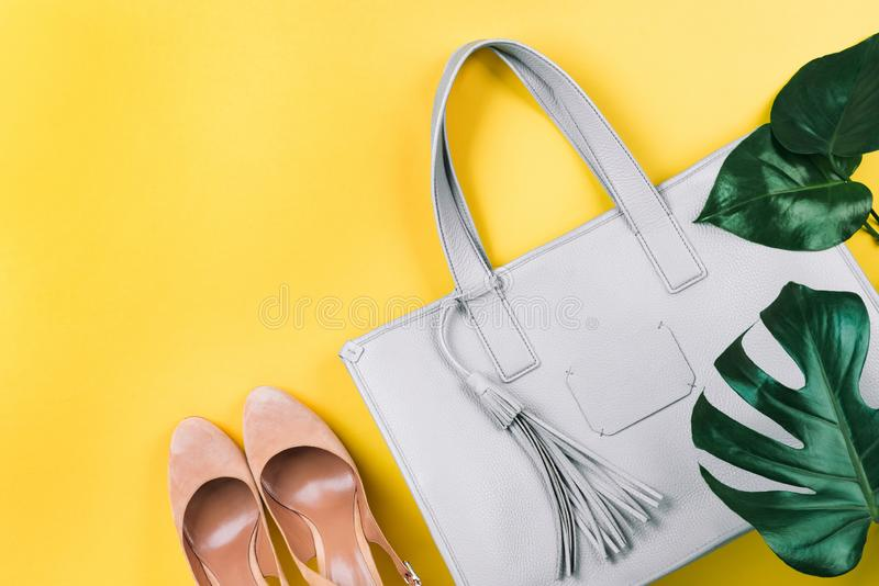 Σύνθεση της θηλυκής τσάντας, των παπουτσιών και του πράσινου φύλλου στοκ εικόνα με δικαίωμα ελεύθερης χρήσης