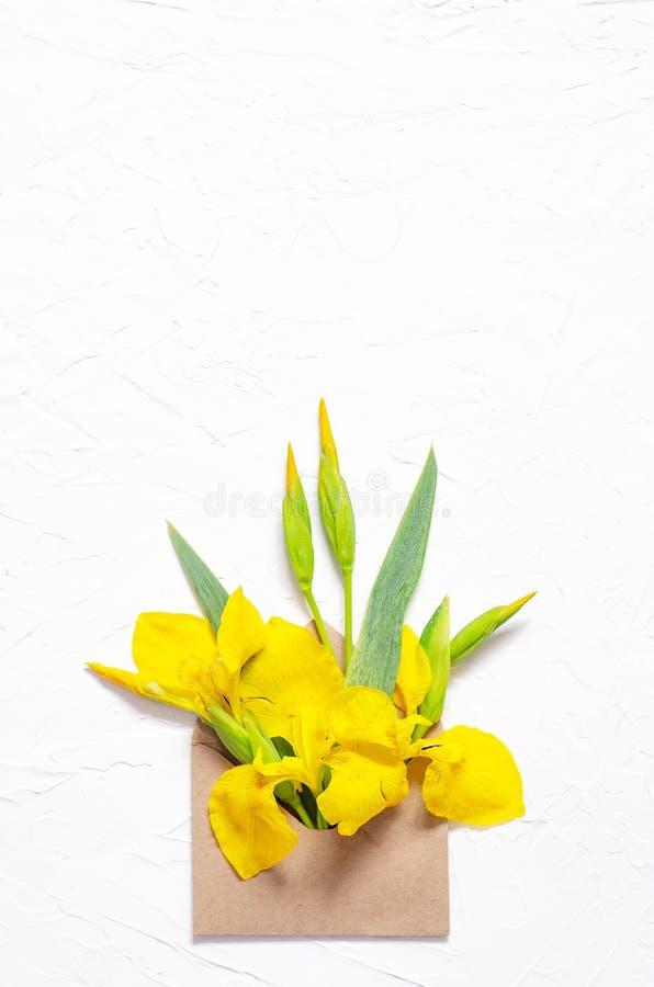 Σύνθεση των ίριδων λουλουδιών σε έναν φάκελο σε ένα άσπρο υπόβαθρο στοκ φωτογραφία με δικαίωμα ελεύθερης χρήσης