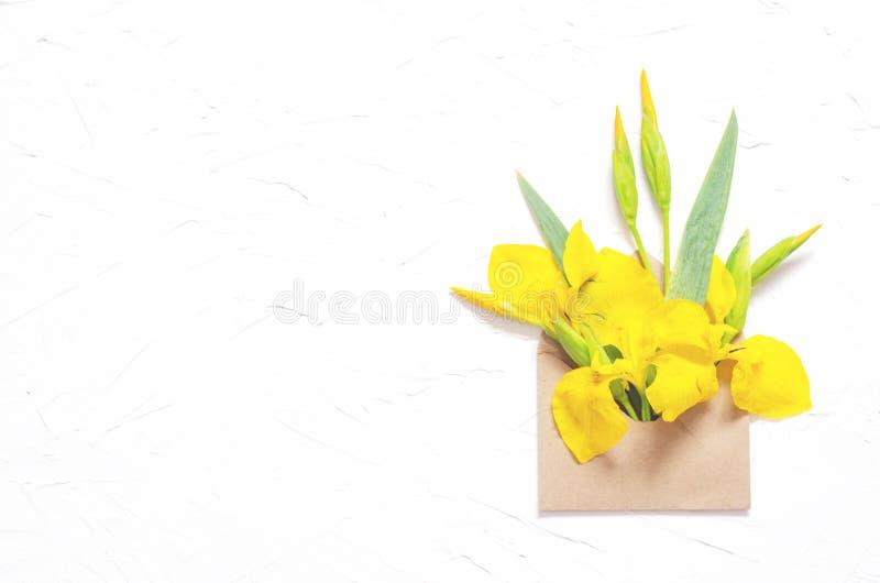Σύνθεση των ίριδων λουλουδιών σε έναν φάκελο σε ένα άσπρο υπόβαθρο στοκ φωτογραφία