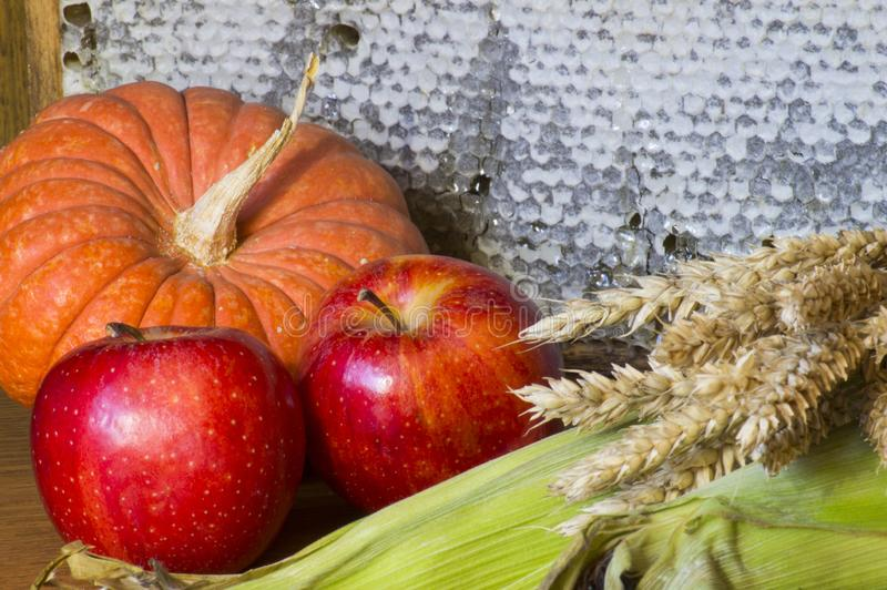 Σύνθεση των λαχανικών, των φρούτων και των προϊόντων μελισσών για την ημέρα των ευχαριστιών στοκ φωτογραφίες