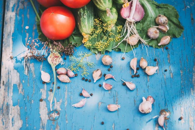 Σύνθεση των ρωσικών παραδοσιακών λαχανικών στοκ φωτογραφίες
