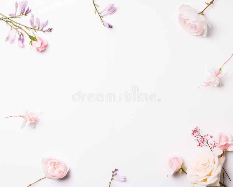 Σύνθεση των φευκτών λουλουδιών στο λευκό φόντο Προβολή 'Γενικά έξοδα' στοκ φωτογραφία