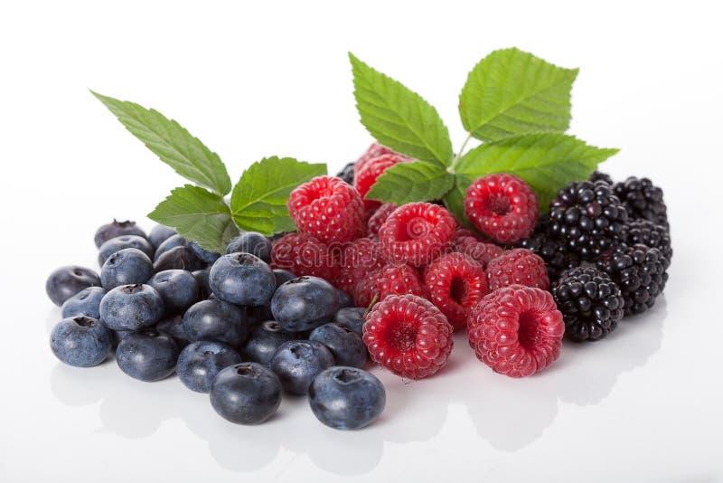 Σύνθεση των φρέσκων wildberries στοκ εικόνες