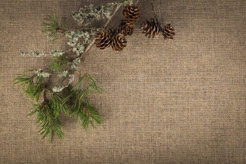Σύνθεση των φυσικών υλικών στο υπόβαθρο λινού στοκ εικόνες με δικαίωμα ελεύθερης χρήσης