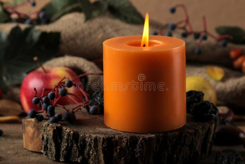 Σύνθεση φθινοπώρου με τα φρούτα κεριών και φθινοπώρου και τα μούρα και τα κάστανα σε έναν ξύλινο πίνακα στοκ φωτογραφία με δικαίωμα ελεύθερης χρήσης