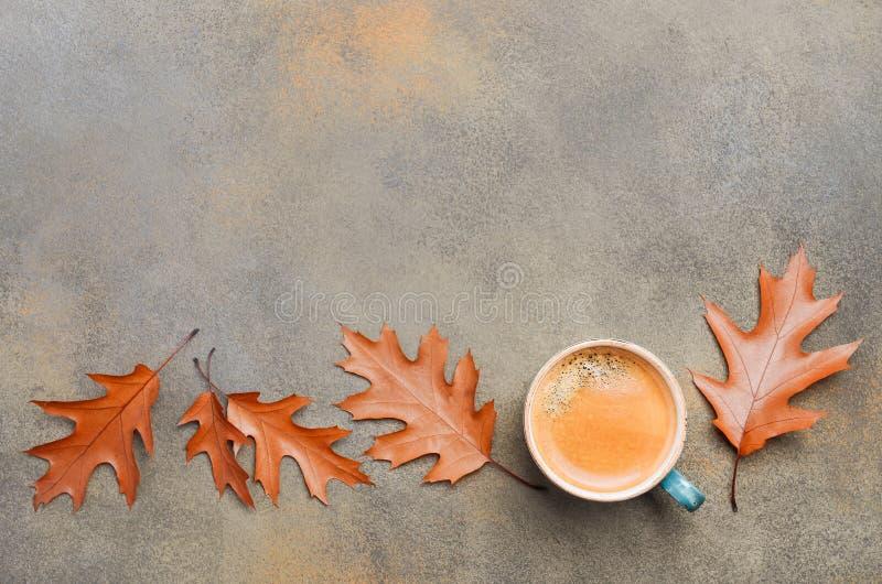Σύνθεση φθινοπώρου με τα φύλλα φλιτζανιών του καφέ και φθινοπώρου στο πέτρινο ή συγκεκριμένο υπόβαθρο στοκ εικόνες με δικαίωμα ελεύθερης χρήσης
