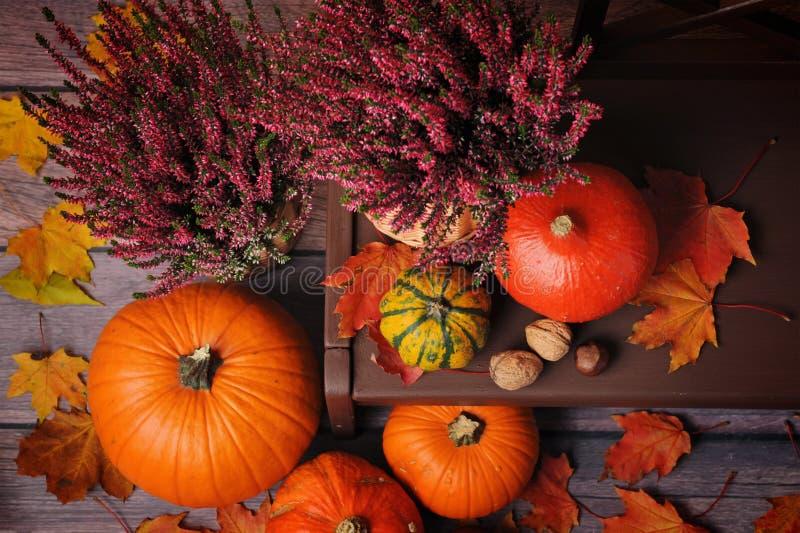 Σύνθεση φθινοπώρου με τις πορτοκαλιές κολοκύθες σε ένα καφετί bankground στοκ εικόνα