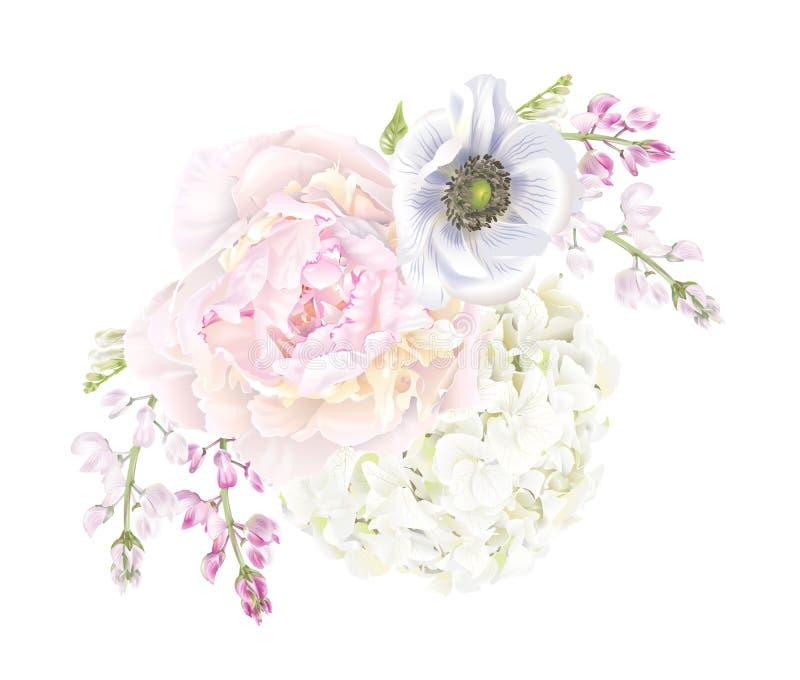 Σύνθεση anemone Peony απεικόνιση αποθεμάτων