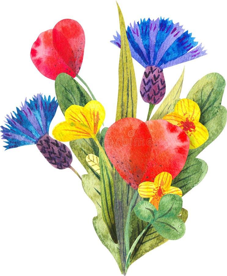 Σύνθεση Watercolor με τα διαφορετικά φωτεινά άγρια λουλούδια διανυσματική απεικόνιση