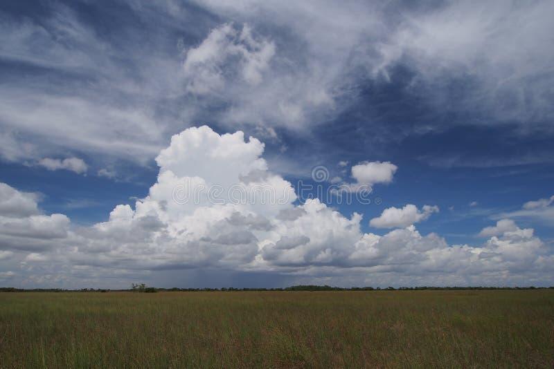 Σύννεφα βροχής πέρα από το Everglades στοκ εικόνες