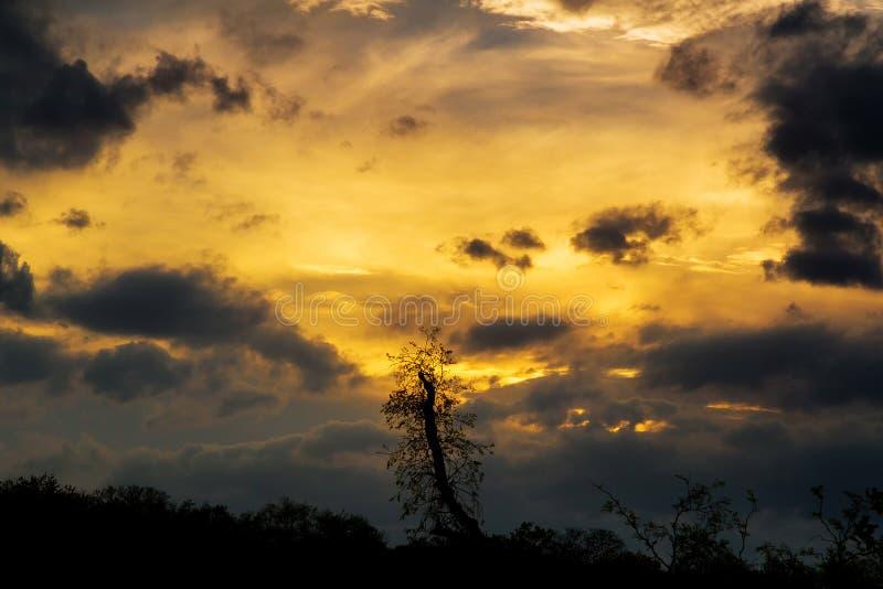 Σύννεφα ηλιοβασιλέματος σωρειτών με τον καθορισμό ήλιων στοκ φωτογραφία