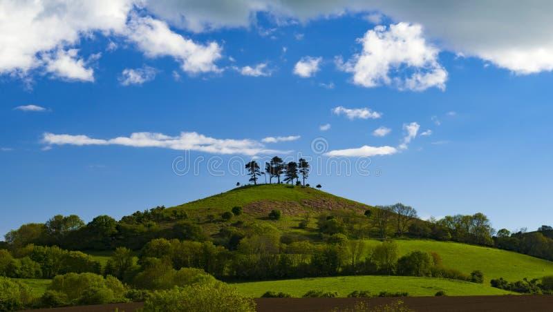 Σύννεφα πέρα από ολοκληρωμένο το δέντρο Hill Colmer, Dorset στοκ εικόνες