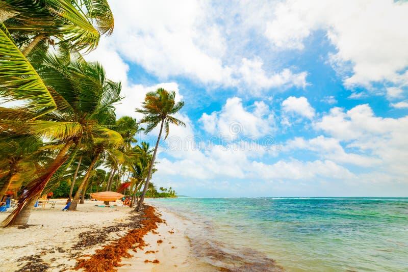 Σύννεφα πέρα από την παραλία Bois Jolan στη Γουαδελούπη στοκ εικόνα