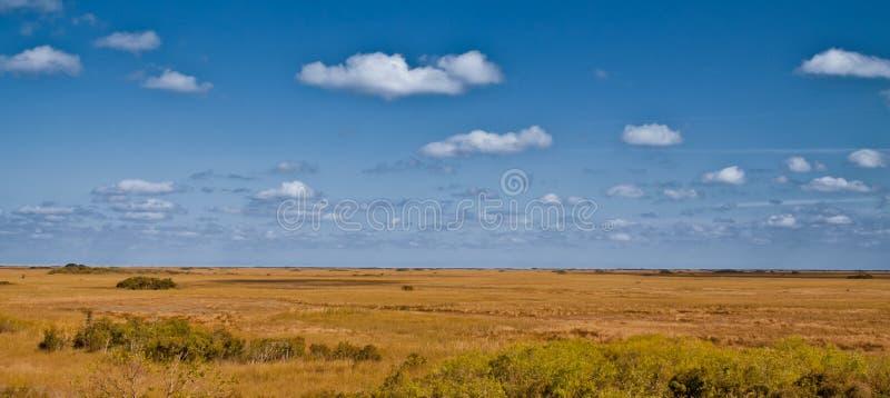 Σύννεφα πέρα από το πεδίο, Everglades, Φλώριδα στοκ εικόνα με δικαίωμα ελεύθερης χρήσης