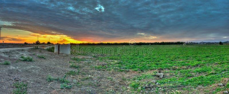 Σύννεφα Cirrocumulus πέρα από τον τομέα στο ηλιοβασίλεμα στοκ εικόνες