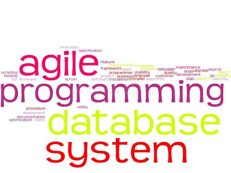 Σύννεφο λέξης - ανάπτυξη λογισμικού διανυσματική απεικόνιση