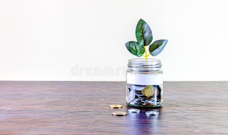 Σύνολο βάζων γυαλιού των νομισμάτων και μια ανάπτυξη εγκαταστάσεων μέσω του Κενή ετικέτα στοκ φωτογραφίες