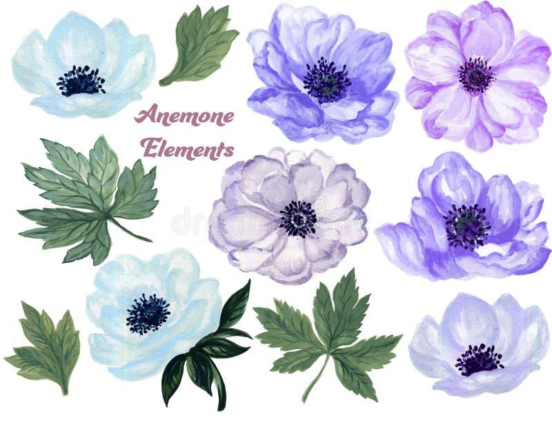 Σύνολο γκουας Watercolor anemone floral και χεριού φύλλων που σύρεται απεικόνιση αποθεμάτων