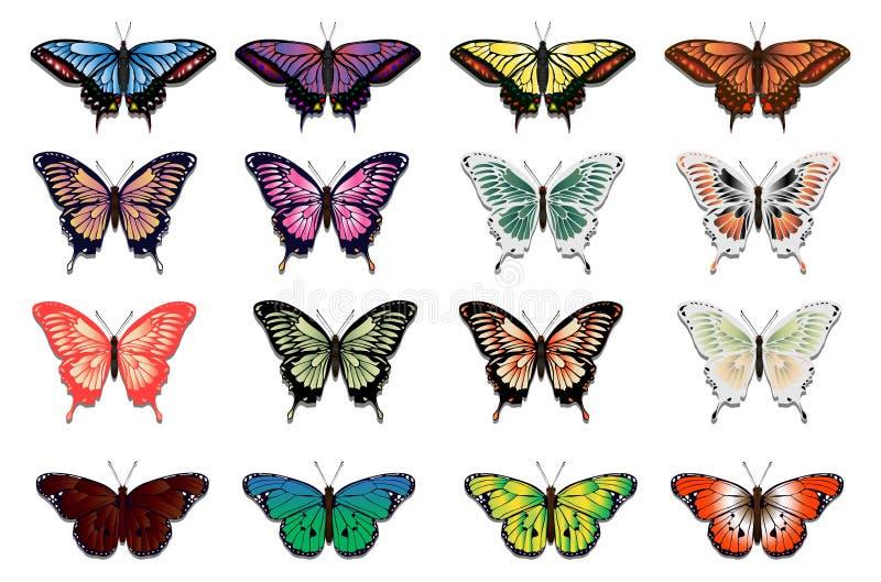Σύνολο δέκα έξι πολύχρωμων πεταλούδων ελεύθερη απεικόνιση δικαιώματος