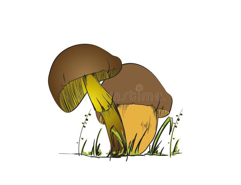 Σύνολο δασικών μανιταριών - συρμένο χέρι διανυσματικό σκίτσο διανυσματική απεικόνιση