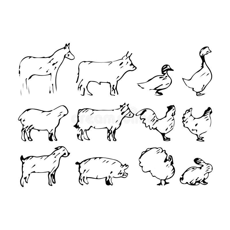 Σύνολο διανυσματικού χεριού σκίτσων απεικόνισης ζώων αγροκτημάτων που σύρεται με το BL διανυσματική απεικόνιση