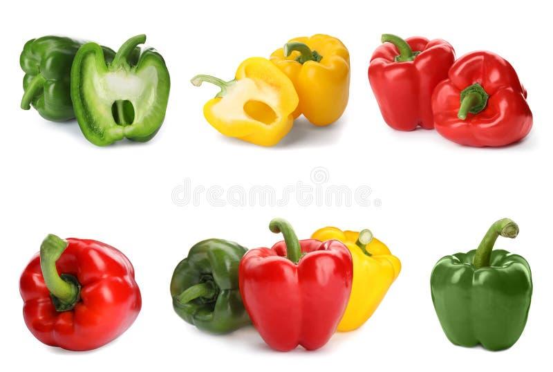 Σύνολο διαφορετικών ζωηρόχρωμων πιπεριών κουδουνιών στο λευκό στοκ φωτογραφία με δικαίωμα ελεύθερης χρήσης