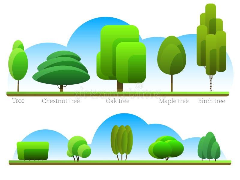 Σύνολο διαφορετικών τύπων πράσινων δέντρων ελεύθερη απεικόνιση δικαιώματος