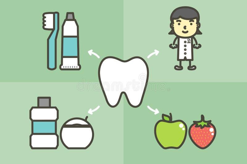Σύνολο δοντιού και οδοντόβουρτσας καλύτερων φίλων, οδοντόπαστας, mouthwash, νήματος, φρούτων και οδοντιάτρου διανυσματική απεικόνιση