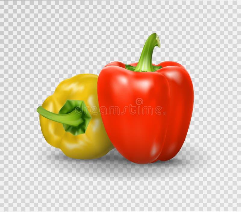 Σύνολο δύο πιπεριών Κίτρινο, κόκκινο πιπέρι Διανυσματική απεικόνιση, φυσική ρεαλιστική εικόνα πιπεριών με τη σκιά για μαγειρικό ελεύθερη απεικόνιση δικαιώματος