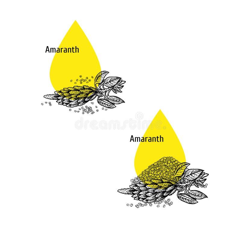Σύνολο εικονιδίων πετρελαίου αμάραντων Συρμένο χέρι σκίτσο Εκχύλισμα των εγκαταστάσεων r απεικόνιση αποθεμάτων