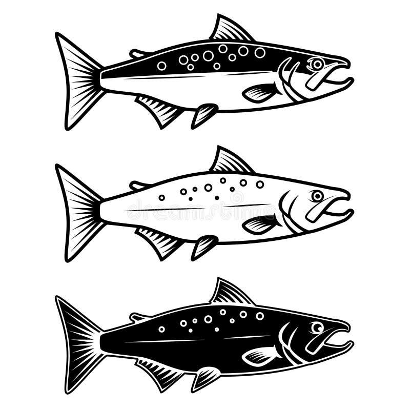 Σύνολο εικονιδίων σολομών στο άσπρο υπόβαθρο Στοιχείο σχεδίου για το λογότυπο, ετικέτα, έμβλημα, σημάδι διανυσματική απεικόνιση