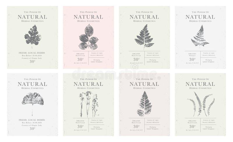 Σύνολο εξατομικεύσιμης εκλεκτής ποιότητας ετικέτας των φυσικών οργανικών βοτανικών προϊόντων ελεύθερη απεικόνιση δικαιώματος