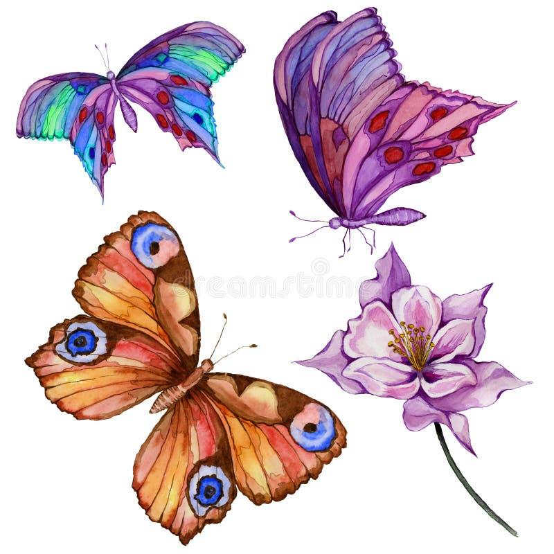 Σύνολο ζωγραφικής Watercolor Τρεις φωτεινές όμορφες πεταλούδες, λουλούδι colombine σε έναν μίσχο η ανασκόπηση απομόνωσε το λευκό απεικόνιση αποθεμάτων