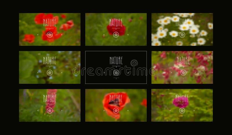 Σύνολο θολωμένων υποβάθρων με την εικόνα των λουλουδιών στοκ φωτογραφία με δικαίωμα ελεύθερης χρήσης