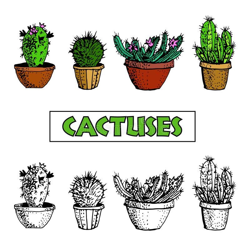Σύνολο κάκτου και succulent εγκαταστάσεων στα δοχεία λουλουδιών διανυσματική απεικόνιση